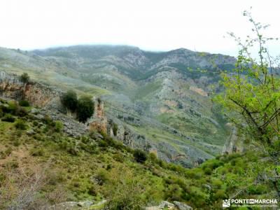 Parque Natural Cazorla-Sistema Prebético;somiedo parque natural ayuntamiento lozoya vall de laguar